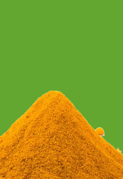 TURMERIC IS USED TO FACILITATE DIGESTION